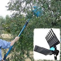 Vareadores para olivos y almendros