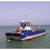 Grúas marinas