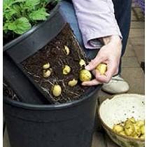 Macetas para plantar patatas