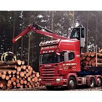 Grúas forestales y para reciclaje