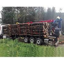 Grúas para reciclaje y forestal