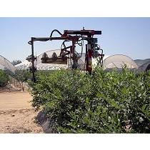 Podadoras de arándanos y arbustos de discos