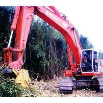 Trituradoras forestales