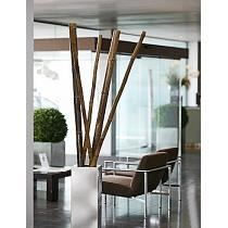 Tutores de bambú decorativos