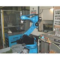 Instalación de carga/descarga robotizada