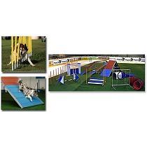 Obstáculos para el entrenamiento de mascotas