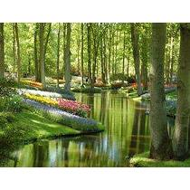 Gestión de áreas verdes sostenibles