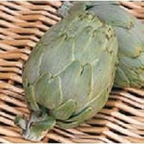 Semillas de alcachofa
