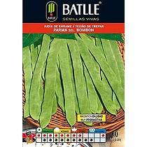 Semillas de judía verde