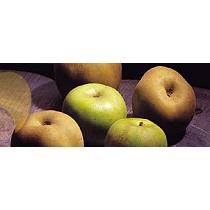 Manzanas Reineta del Bierzo