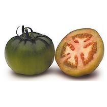 Semillas de tomate