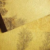 Areniscas de color ocre/amarillo/dorado