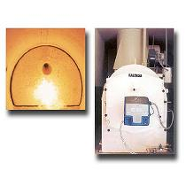 Servicios de recogida e incineración