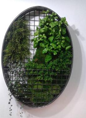 Fernando pozuelo apuesta por el jard n vertical jardiner a for Jardin vertical liofilizado