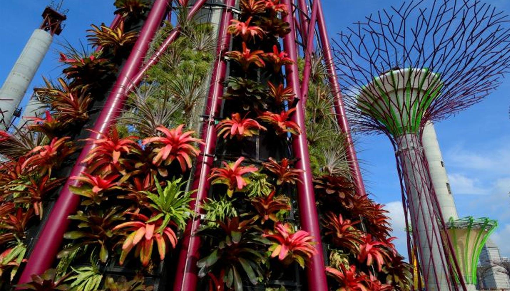 singapur garden