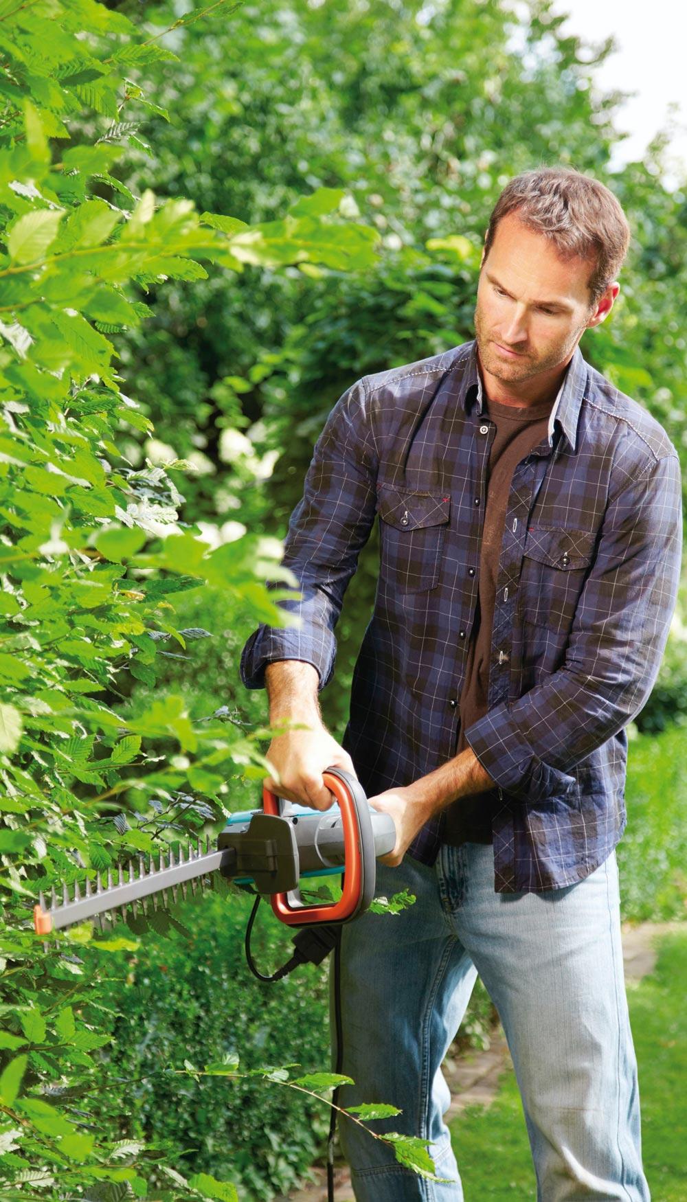 Preparaci n del jard n para el invierno jardiner a for Preparacion de jardines