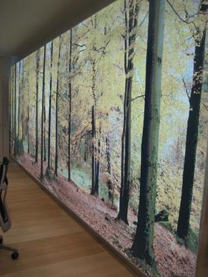 Acerta realiza el cambio de imagen de las nuevas oficinas for Caja rural de navarra oficinas
