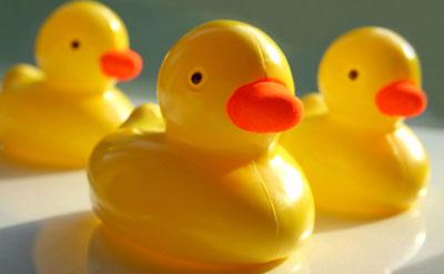 Materiales naturales on emaze for Plasticos para lagos artificiales