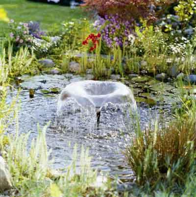 Gardena asesora sobre la instalaci n de estanques en los for Aspersores para jardin