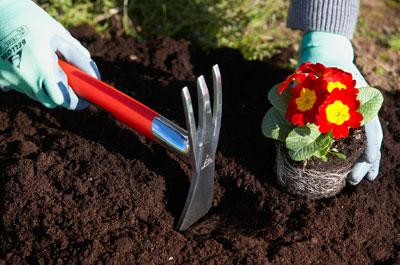 Puesta a punto en el jard n jardiner a for Bioshock jardin de las recolectoras