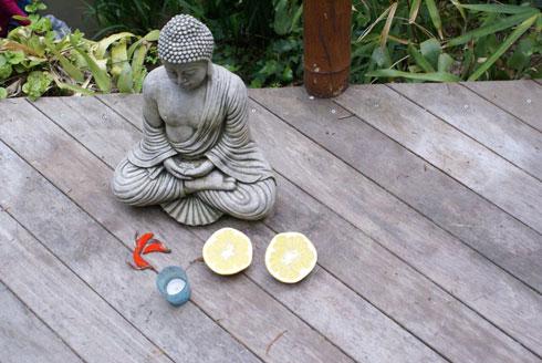 Buda en el jard n jardiner a - Buda jardin ...