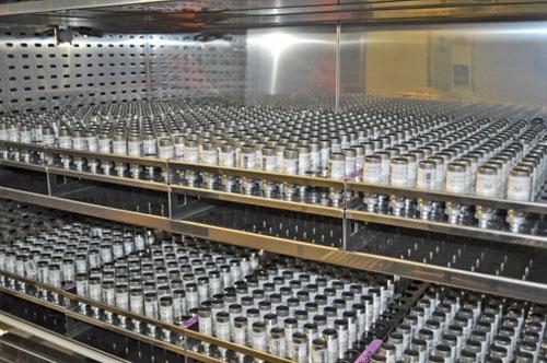Inyectoras eléctricas garantizan la mejor precisión y eficiencia ...