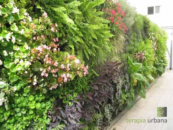Entrevista a fernando hidalgo arquitecto y socio fundador for Plantas adecuadas para jardines verticales