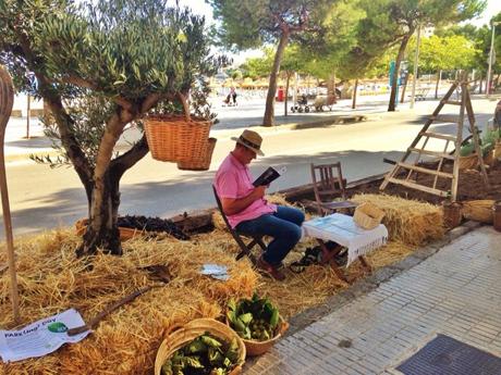 Exitosa primera edici n del park ing day de la comunidad for Agro jardin estepona