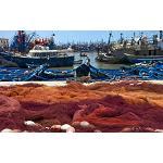 Prorrogado el acuerdo de pesca entre la Unión Europea y Mauritania - Interempresas