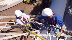 Picture of Trabajando al sol