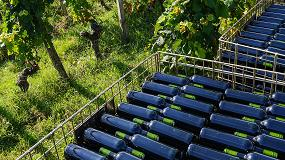 Foto de Las exportaciones espa�olas de vino aumentaron en 66 millones de euros en el primer semestre