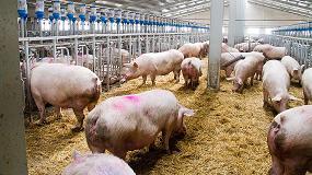 Foto de Celebrado el 'I Seminario Hispano-Chino' sobre los aspectos técnicos y sanitarios de las exportaciones de carne de porcino