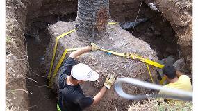 Foto de Los sistemas de anclaje para árboles, solución ideal de sujeción en cubiertas ajardinadas