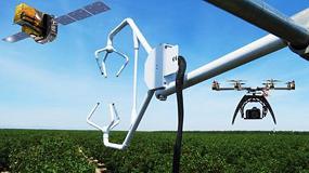 Foto de El IRTA organiza la Jornada científico-técnica de teledetección aplicada en la agricultura
