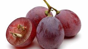 Foto de Optimización de la extracción de compuestos fenólicos del hollejo y de la semilla de uva