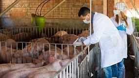 Foto de Perspectivas de futuro de la ganadería: factores limitantes y uso de antibióticos
