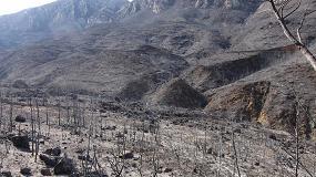 Foto de Grupo Projar propone sistemas de proyección de sustrato para recuperar zonas forestales incendiadas
