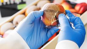 Foto de El IRTA desarrolla dos productos biológicos para combatir la podredumbre causada por Monilinia en melocotoneros
