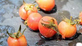 Foto de Syngenta muestra su innovación vegetal en Fruit Logística 2018