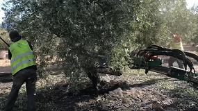 Foto de Los principales tractores para el olivar