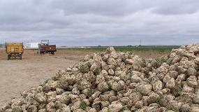 Foto de COAG denuncia que Azucarera persigue la interlocución directa con los remolacheros