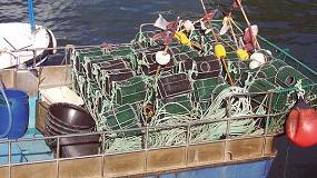 Foto de El proyecto CANARD busca conocer mejor las pesquerías artesanales del Cantábrico para gestionarlas de forma sostenible