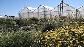 Foto de La apuesta por la tecnología puede contribuir a mejorar la sostenibilidad de la horticultura