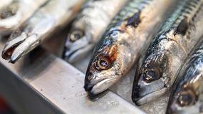 Foto de 'Know to protect', el proyecto que quiere sensibilizar e impulsar los productos pesqueros y acuícolas sostenibles