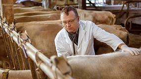 Foto de La inmunoterapia como estrategia para combatir la resistencia a los antibióticos
