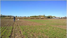 Foto de Los cultivos cubierta mejoran la calidad del suelo