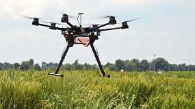 Foto de IRTA investiga en nuevas variedades de trigo resistentes a la sequía y adaptadas al cambio climático