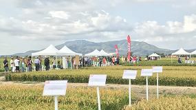 Foto de El IRTA celebra junto a más de 300 asistentes los 25 años de su jornada dedicada al arroz