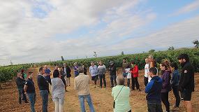 Foto de Presentado un proyecto de gestión inteligente para la mejora de la sostenibilidad en viña
