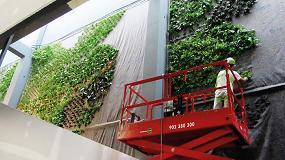 Picture of Ignacio Solano finaliza un jardín vertical de más de 300 metros cuadrados